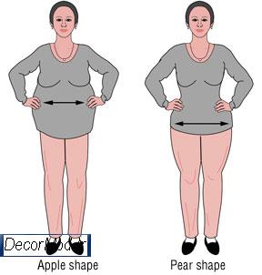 چاقی زیر شکم 0