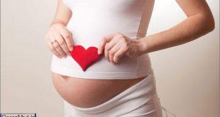 دوران حاملگی 88