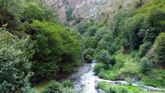 جنگل های بکر مازندران 123