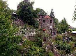 جنگل های بکر مازندران 5555